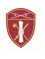 Шеврон вышитый, ЛРР и ГК  РГ УФО (бордовый) с липучкой